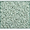 Seedbead 10/0 Mettallic Light Green Loose - Solgel